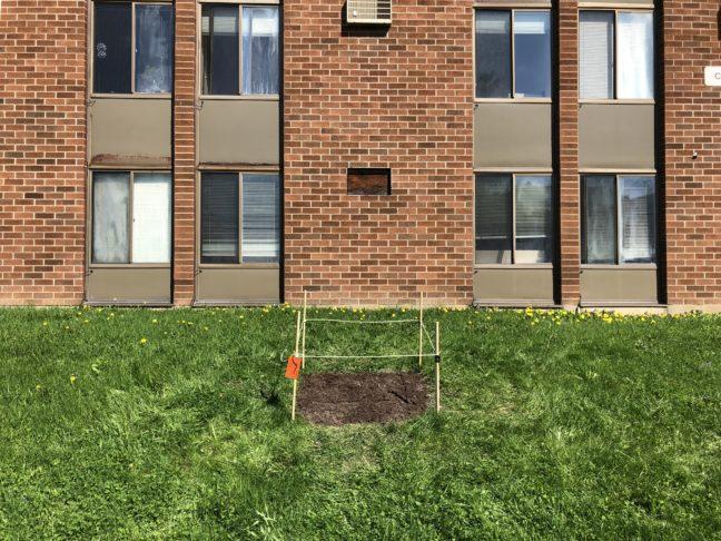 Test Plot #5, RPI Colonie Apartments