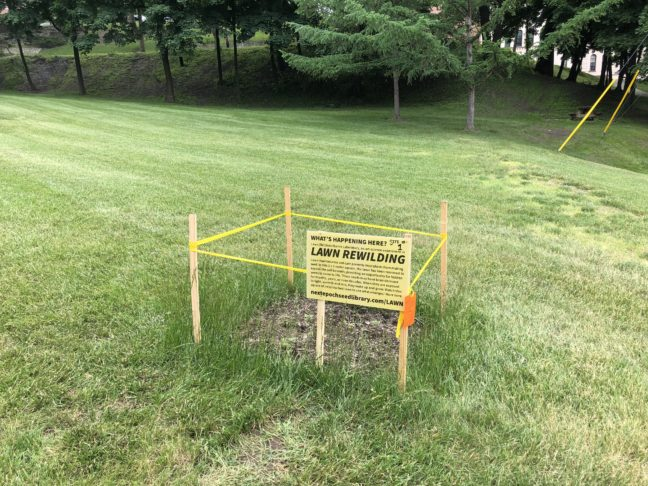 Test Plot #1 on RPI's campus at the corner of Sage Avenue and 10th Street