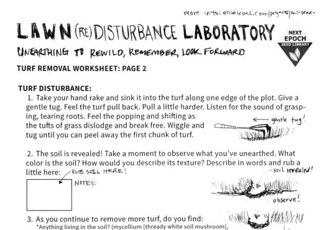 Lawn Lab Worksheet
